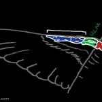RG_still_winggraph